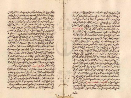 مخطوطة - فتاوى ابن الظهيرة