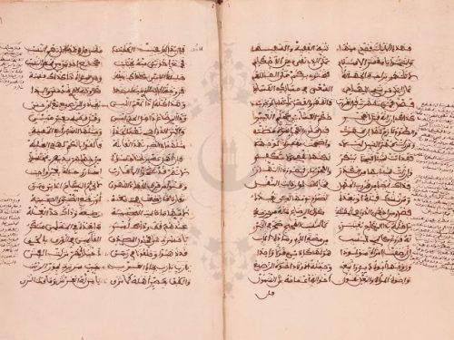 مخطوطة - منظومة الهبطى فى الفقه المالكى