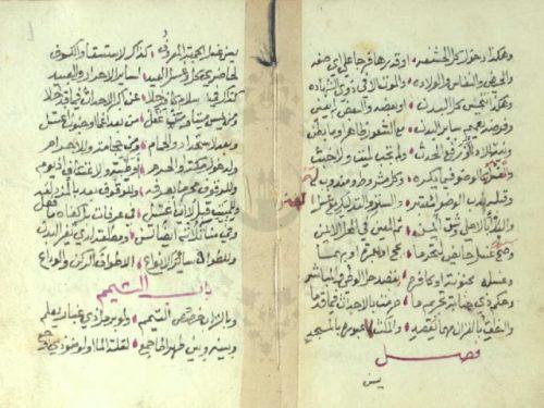 مخطوطة - نظم التحرير في الفقه الشافعي للعمريطي