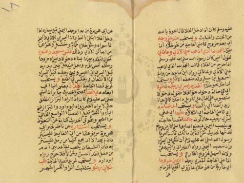 مخطوطة - هداية الراغب فى شرح عمدة الطالب فى فقه الحنابلة --300516