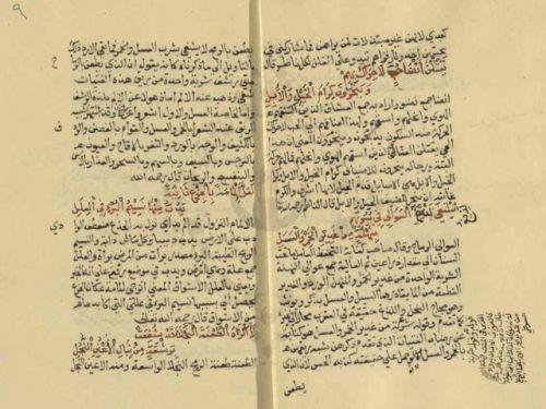 مخطوطة - شرح البدراني على لامية العجم