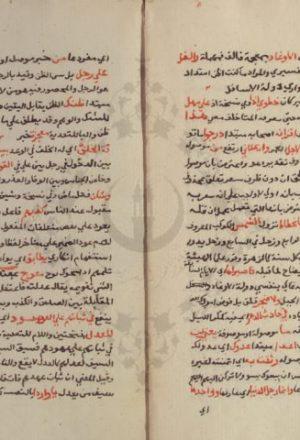 مخطوطة - شرح لامية العجم لزكرياء الأنصاري