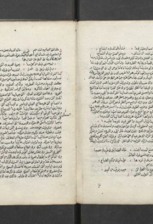 مخطوطة - فقه اللغة وسر العربية