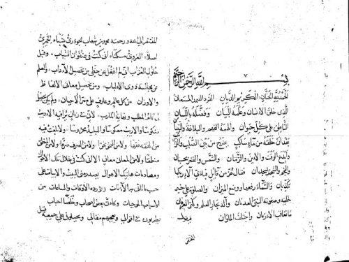 مخطوطة - كتاب فى الادب