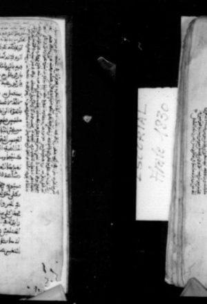مخطوطة - مسائل في الصرف