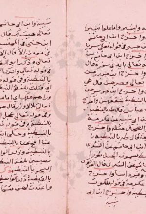 مخطوطة - المتوكلي للسيوطي
