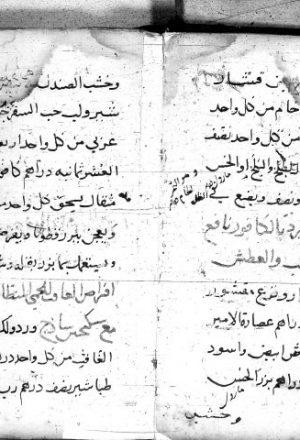 مخطوطة - كتاب في الطب