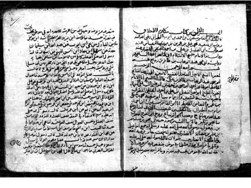 مخطوطة - مكتبة ببليوت -مجموع831 - برلين