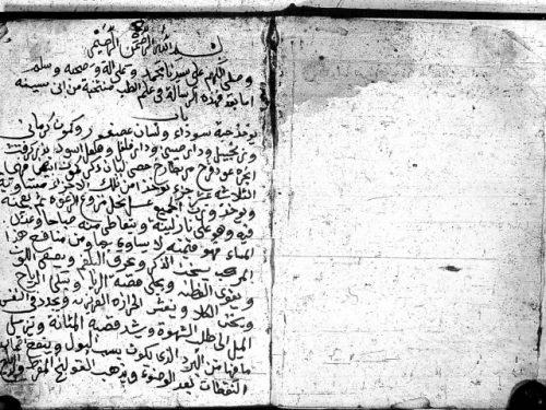 مخطوطة - نتيجة الفكر في علاج البصـر