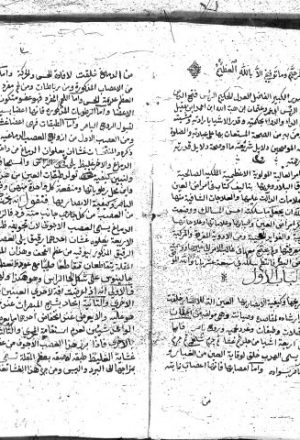 مخطوطة - نتيجة الفكر في علاج أمراض البصر