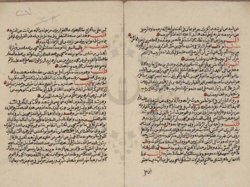 مخطوطة - تبيين العجب بما ورد فى فضل رجب لابن حجر